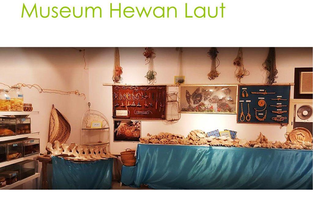 museum-hewan-laut